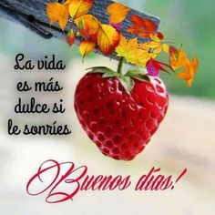 Buenos días!,😄 Daily Life Quotes, Good Day Quotes, Good Morning Quotes, Morning Love, Good Morning Coffee, Good Morning Images, Positive Phrases, Positive Thoughts, Emoticon Love