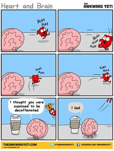 The awkward yeti. I have finally found an illustration of what's behind my distrust of coffee shop baristas when I ask for decaf. It has happened more than once.