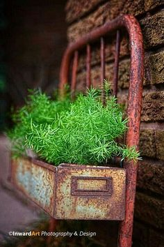 Outdoor DIY & Decor : 16 Rustic Metal Projects for Your Backyard -Read More – Garden Junk, Garden Planters, Metal Garden Art, Metal Projects, Garden Projects, Rustic Gardens, Outdoor Gardens, Gray Gardens, Mini Plantas