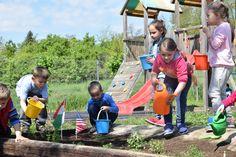 Earth Day Commemoration | April 25, 2017 | Villány, 'Kikerics' Kindergarten