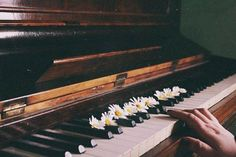 The piano is a stringed instrument. Its many parts are organized into five general structural and mechanical areas of either grand or vertical pianos.