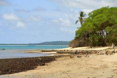 Praia da Várzea do Una, São José da Coroa Grande (PE)