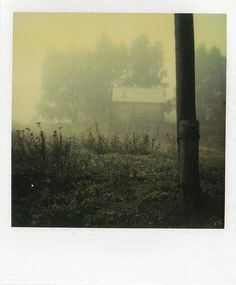 Myasnoye, September 26, 1981_III    Instant Light: Tarkovsky Polaroids    Edited by Giovanni Chiaramonte & Andrei Tarkovsky  Introduction by Tonino Guerra    Thames & Hudson  2004  ISBN: 0 500 28614 0    www.worldcat.org/oclc/62796344