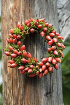 Rose hip wreaths come in many different styles, allowing you to decorate for a range of holidays and seasons. Not only are they diverse, but rose hip wreaths are also quite unique compared to the typical pinecone wreath. Autumn Wreaths, Christmas Wreaths, Christmas Decorations, Holiday Decor, Moss Wreath, Diy Wreath, Autumn Inspiration, Christmas Inspiration, Wreaths For Front Door