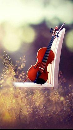 Violin !!!