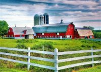 Red Barns and White Fence