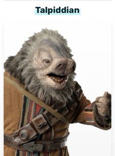 Character Concept, Concept Art, Character Design, Star Wars Species, Character Template, Star Wars Design, Star Wars Pictures, Alien Creatures, Alien Art