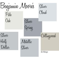 use benjamin moore silver cloud in kitchen (color of kitchen at Cambri in Summit)