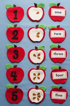 Apple Seed Counting Felt Board Pattern PDF Digital Download  Buy three felt board patterns and get one free of equal or lesser value - just name your free pattern choice in the Message to sell during checkout. It will be emailed to you within 24 hours of payment. This set may be used to develop: Counting—how many seeds on each apple, counting to five  Matching—numerals, number word, and quantity of seeds  Ordering— put the apples in sequence Numeral and number word recognition  This felt set…
