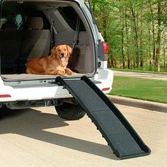 Full-sized but super light, this ramp helps pets access vehicles, furniture or other high places. The surface delivers high-traction for safe climbing.