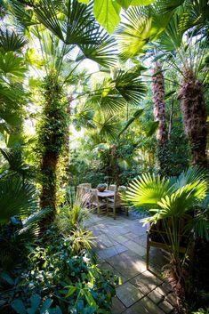 Paradise on a standard city lot: Horticulturalist Sean Hogan to sell his Portland hideaway (photos) Gartengestaltung ? Small Tropical Gardens, Tropical Garden Design, Tropical Landscaping, Small Garden Design, Front Yard Landscaping, Landscaping Ideas, Backyard Ideas, Tropical Patio, Hillside Landscaping