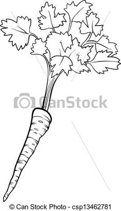 Vector of parsley vegetable cartoon for coloring book - Black and ...