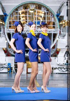 ANA・新卒【500名】大量採用発表! の画像|美人の一歩 ・元客室乗務員がお届けする「美しく健康に、そして幸せに生きる」秘訣