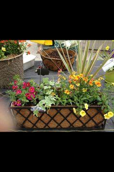 Darling flower arrangement. Love the colors.
