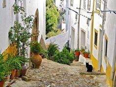 As 5 vilas mais bonitas de Portugal | VortexMag Beautiful Places To Visit, Places To See, Most Beautiful, Beautiful Things, Visit Portugal, Spain And Portugal, Sea Activities, Stone Street, Portuguese Culture