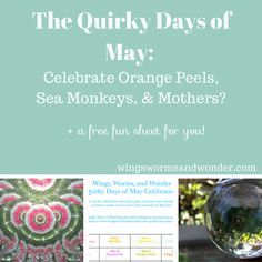 I discovered a list of so many quirky celebration days in the month of May! Click to laugh your way through May + get a Nature Journal prompt pdf funsheet!