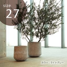 かわいいフォルムの丸型植木鉢「CLAYPOT_DropRound27」ナチュラルカラーが植栽と馴染みます