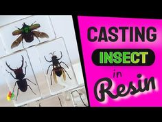 Membuat Gantungan Kunci Serangga Dari Resin 108 / RESIN ART - YouTube Making Resin Rings, Resin Art, Keychains, Insects, It Cast, Signs, Youtube, Diy, Key Hangers