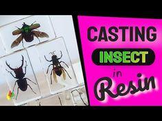 Membuat Gantungan Kunci Serangga Dari Resin 108 / RESIN ART - YouTube Making Resin Rings, Resin Art, Insects, It Cast, Signs, Youtube, Diy, Bricolage, Shop Signs