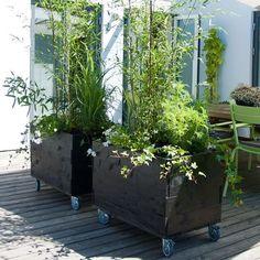 Small Gardens, Outdoor Gardens, Decoration Plante, Mediterranean Garden, Love Garden, Garden Planning, Garden Inspiration, Garden Furniture, Backyard Landscaping
