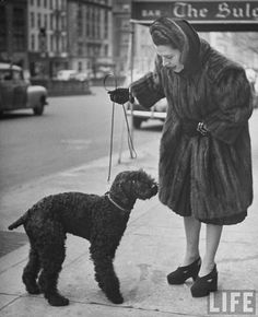 Actress Ruth Gordon clad in mink coat walking her black poodle on the Streets of NYC in 1944