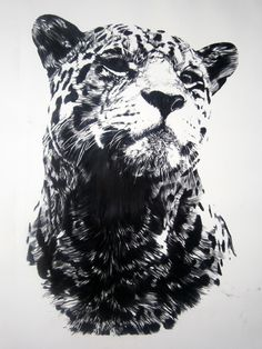"Artist: Mehmet Dere; Charcoal, 2012, Drawing ""Legend"""