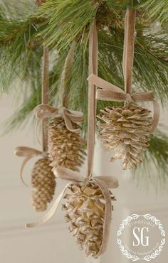 give pine cones a beautiful bleached look, Christmas decorations, crafts, seasonal holiday decor Sou Pine Cone Crafts, Christmas Projects, Holiday Crafts, Christmas Crafts For Gifts For Adults, Holiday Ideas, Christmas Ideas, Noel Christmas, Winter Christmas, Vintage Christmas