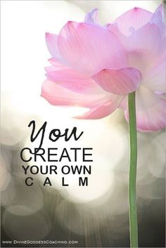 You Create Your Own Calm u alone are incharge and isn't that good to know ; ] #IntuitionSimplicityCurveContest