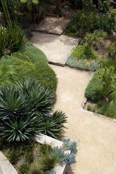 Great textures of plants with a zig zag path create interest Garden Paving, Garden Paths, Modern Landscaping, Garden Landscaping, Back Gardens, Outdoor Gardens, Landscape Design, Garden Design, Dubai Garden