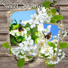 Leigh Penrod A FRESH NEW DAY  http://www.godigitalscrapbooking.com/shop/index.php?main_page=product_dnld_info&cPath=29_387&products_id=27992 template - Lissy Kay Designs ARTISTIC FLAIR