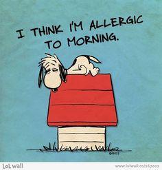 I think I'm allergic to mornings. I don't think. I KNOW I am.