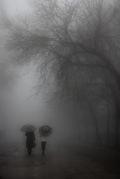 """art-and-dream: Walk In a fog by Harm  """"Don't walk behind me; I may not lead. Don't walk in front of me; I may not follow. Just walk beside me and be my friend.""""   ~Albert Camus"""