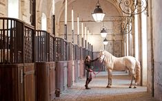 """""""Stables at Versailles ✨ I might be willing to put up with a few revolutions and a beheading to keep my horses here """" Equestrian Stables, Horse Stables, Horse Farms, Shire Horse, Versailles, Dream Stables, Dream Barn, Luxury Horse Barns, Horse Barn Designs"""