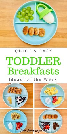 Healthy Toddler Breakfast, Healthy Toddler Meals, Breakfast Ideas For Toddlers, One Year Old Breakfast Ideas, 1 Year Old Meal Ideas, Healthy Snacks For Toddlers, 1 Year Old Meals, Easy Toddler Lunches, Baby Breakfast