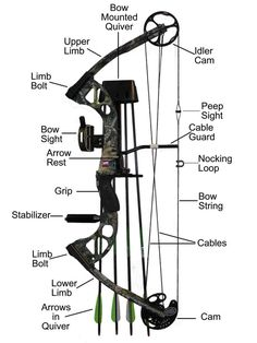 compound bow and its parts
