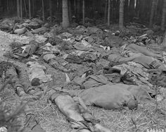 The corpses of prisoners are strewn on the ground in a wooded area of the Gunskirchen concentration camp, a sub-camp of Mauthausen.