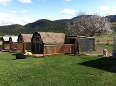Dog Boarding Kennels | ... dog kennels; we are different from your average dog and pet boarding