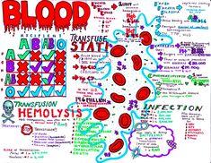 Hanson s anatomy medical school notes study guides hanson s anatomy medical school notes study guides Rn School, Medical School, Pharmacy School, School Ideas, Nursing Information, Medicine Notes, Emergency Medicine, Nursing Mnemonics, Cardiac Nursing