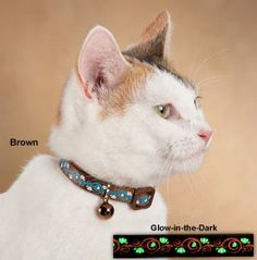 Collar's elegant flower-and-swirl design glows in the dark and enhances your cat's visibility
