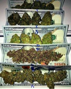 REAL GANJA DISPENSARY is a weed online Global cannabis shop, Order marijuana online now and have it delivered right at your door steps where ever you are without any problems. You do not necessarily need a Medical Marijuana Card to order marijuana from us. Order weed online |buy marijuana online |weed for sale |buy cannabis oil online |buy marijuana wax online |order marijuana wax online worldwide to order contact us through. www.realganjadispensary.com or text or Call: + 1 (908)…