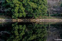 そこは自然の鏡だった。 ここまで水面が穏やかなのは珍しい。 コレも冬のなせる技なのだろうか?(・・?) Mac…