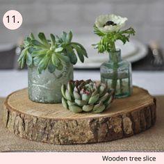 Wooden tree stump / tree slice