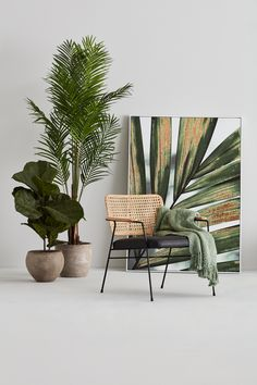 Home Decor Pictures A soft leather seat cushion and a trendy rattan backrest come together to create a stunning and eye-catching accent chair. Decoration Plante, Design Salon, Plant Decor, Cozy House, Home Decor Accessories, Cheap Home Decor, Entryway Decor, Interior Inspiration, Furniture Design