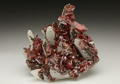 Abundant crystals of lustrous red Realgar are clustered over white Quartz crystals from Romania.