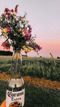 28 Ideas For Landscape Photography Spring Wild Flowers Spring Aesthetic, Nature Aesthetic, Flower Aesthetic, Aesthetic Photo, Aesthetic Pictures, Photo Wall Collage, Picture Wall, Shotting Photo, Mellow Yellow