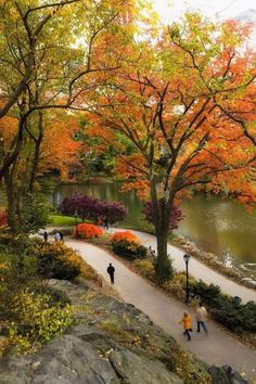 Fall Foliage Map, New York Bucket List, Storm King Art Center, Montreal Travel, Miami, Nyc Fall, Central Park Nyc, Voyage New York, The Cloisters