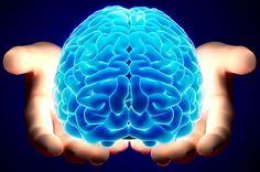 Het menselijke brein is het meest complexe ding in het universum. Het is ook het orgaan dat veruit de meeste energie gebruikt, ten opzichte van zijn gewicht. Het brein maakt maar ongeveer 2% van ons lichaamsgewicht uit, maar gebruikt 20% van de energie. Dit bijzondere orgaan heeft zich in de loop van miljoenen jaren ontwikkeld. …