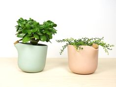 Design Milk Has Found the Smartest Flowerpot We've Ever Seen