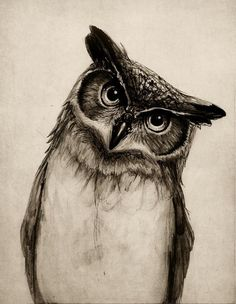 Owl Sketch Art Print by Isaiah K. Stephens