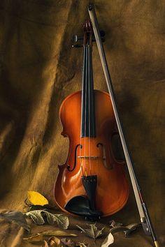 saze-soze by Rakesh Syal - Artistic Objects Musical Instruments (  )